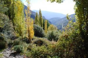 Bubion lies in Poquiera valley