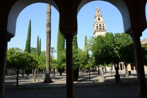 The gardens of the great Mezquita in Cordoba